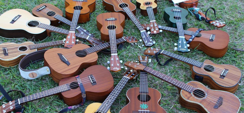Vários ukuleles de todos os tamanhos e marcas